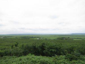 釧路湿原遠景