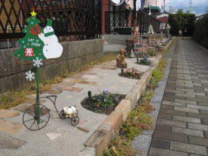 コスモクリアDの冬の花壇
