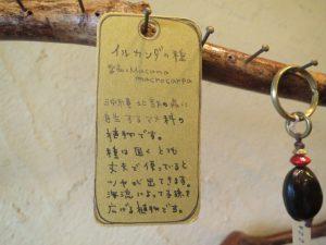 沖縄の観光のお土産のcocolobaのキーホルダー