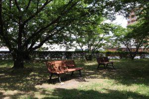 永木町周辺の石手川緑地のベンチ