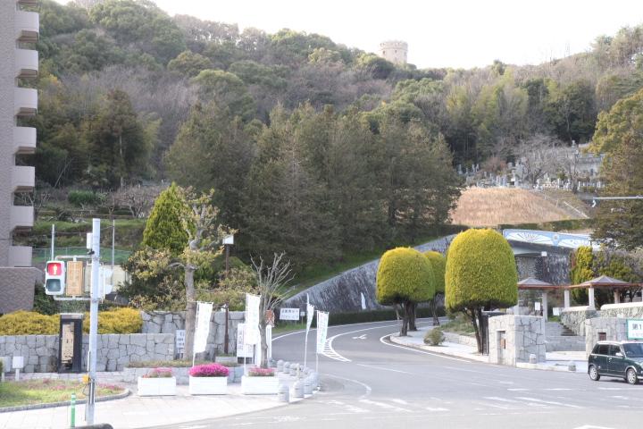 画像:松山総合公園