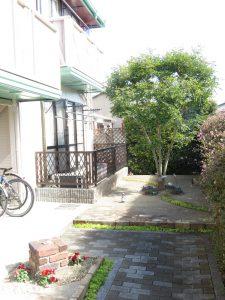 コスモクリアD105前のシンボルツリー