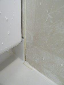 浴室カビとりの最初の除去後