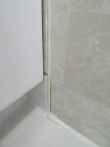 浴室カビとりの再度の除去後