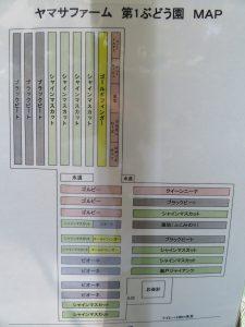 西条旅のヤマサ園芸の品種MAP
