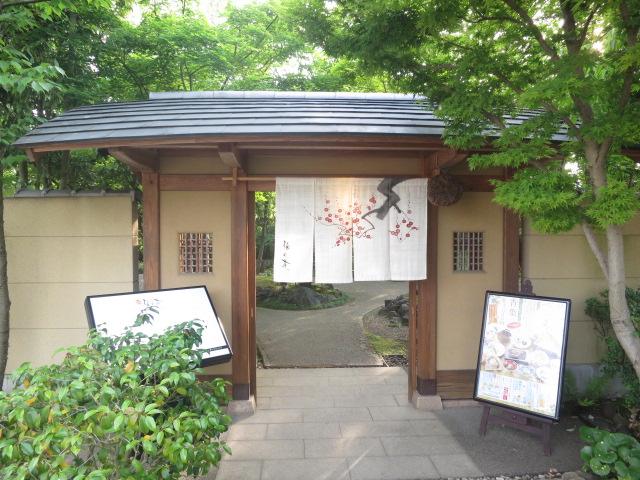 画像:梅の花 松山店